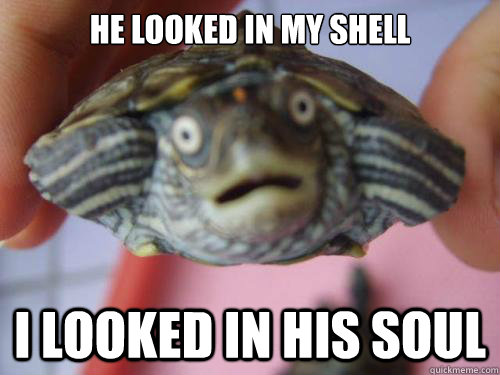 He looked in my shell I looked in his soul - He looked in my shell I looked in his soul  Starry eyed Turtle
