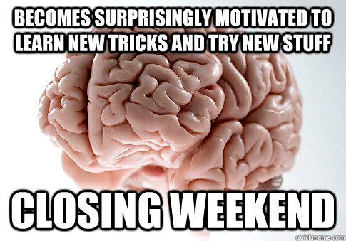 Becomes surprisingly motivated to learn new tricks and try new stuff CLOSING WEEKEND - Becomes surprisingly motivated to learn new tricks and try new stuff CLOSING WEEKEND  ScumbagBrain