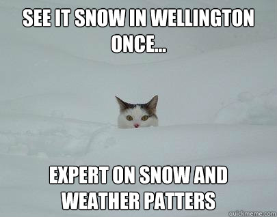 SEE IT SNOW IN WELLINGTON ONCE... EXPERT ON SNOW AND WEATHER PATTERS  Snowpocalypse11