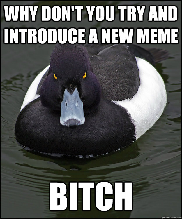 why don't you try and introduce a new meme bitch - why don't you try and introduce a new meme bitch  Angry Advice Duck