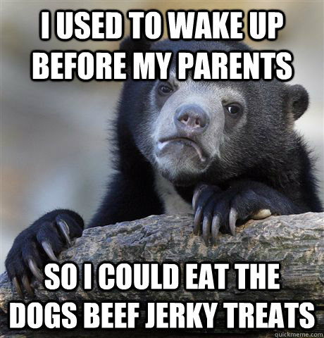 I used to wake up before my parents so i could eat the dogs beef jerky treats - I used to wake up before my parents so i could eat the dogs beef jerky treats  Confession Bear