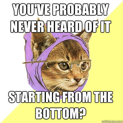 you've probably never heard of it starting from the bottom?  Hipster Kitty