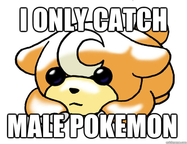I only catch male pokemon  - I only catch male pokemon   Confession Teddiursa