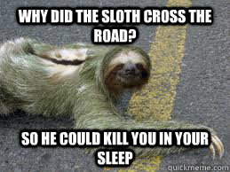 Why Did the sloth cross the road? So he could kill you in your sleep