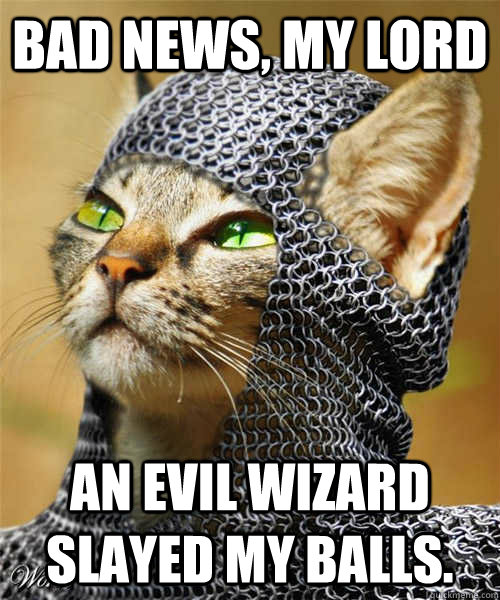 Bad news, my lord An evil wizard slayed my balls.