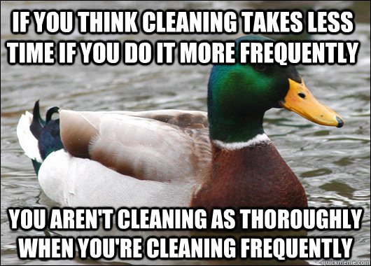 if you think cleaning takes less time if you do it more frequently you aren't cleaning as thoroughly when you're cleaning frequently - if you think cleaning takes less time if you do it more frequently you aren't cleaning as thoroughly when you're cleaning frequently  Actual Advice Mallard
