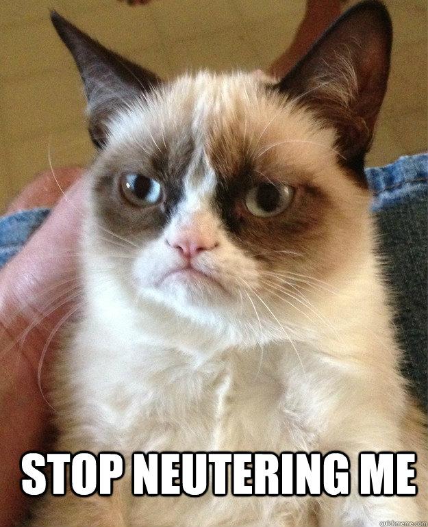 stop neutering me -  stop neutering me  Grumpy Cat