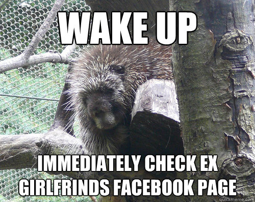 WAKE UP IMMEDIATELY CHECK EX GIRLFRINDS FACEBOOK PAGE  Post break up porcupine