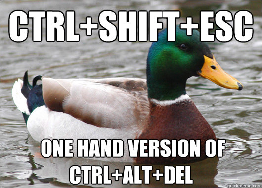 Ctrl+Shift+Esc  one hand version of Ctrl+alt+del - Ctrl+Shift+Esc  one hand version of Ctrl+alt+del  Actual Advice Mallard