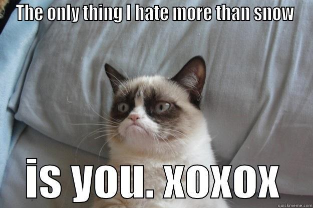 THE ONLY THING I HATE MORE THAN SNOW IS YOU. XOXOX Grumpy Cat