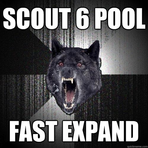Scout 6 pool Fast expand - Scout 6 pool Fast expand  Insanity Wolf