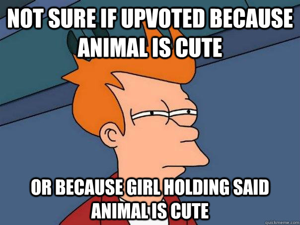 NOT SURE IF UPVOTED BECAUSE ANIMAL IS CUTE OR BECAUSE GIRL HOLDING SAID ANIMAL IS CUTE - NOT SURE IF UPVOTED BECAUSE ANIMAL IS CUTE OR BECAUSE GIRL HOLDING SAID ANIMAL IS CUTE  Futurama Fry