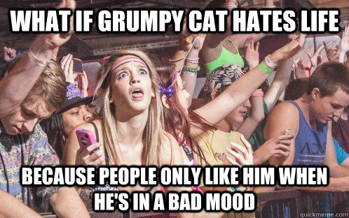 what if grumpy cat hates life because people only like him when he's in a bad mood