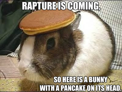 Rapture is coming, So here is a bunny  with a pancake on its head.