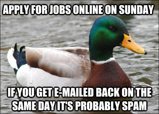 Apply for jobs online on Sunday If you get e-mailed back on the same day it's probably spam - Apply for jobs online on Sunday If you get e-mailed back on the same day it's probably spam  Actual Advice Mallard