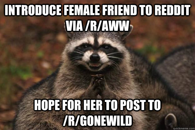 Introduce female friend to reddit via /r/aww Hope for her to post to /r/gonewild  Evil Plotting Raccoon