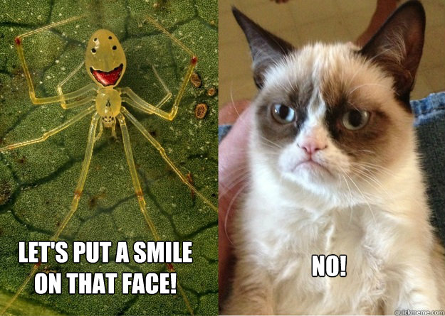 Grumpy Meme Face 9f11cd61f61c031a1cf46ded8055