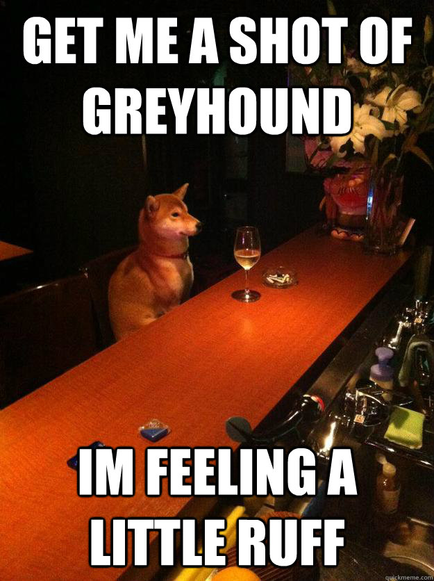 Get me a shot of greyhound im feeling a little ruff