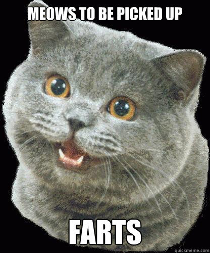 MEOWS TO BE PICKED UP FARTS