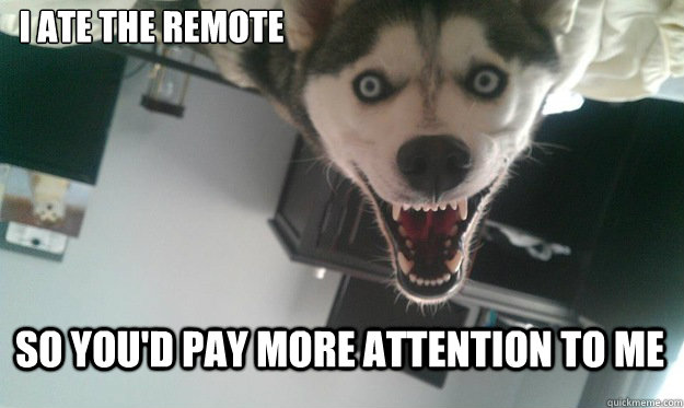 I ate the remote So you'd pay more attention to me - I ate the remote So you'd pay more attention to me  Overly Attached Dog