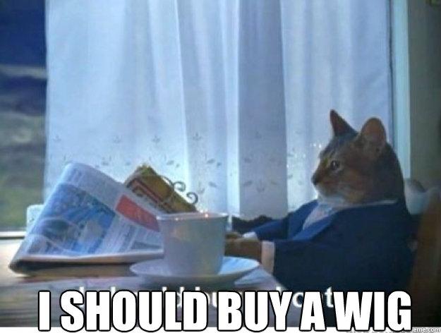 i should buy a wig -  i should buy a wig  newspaper cat