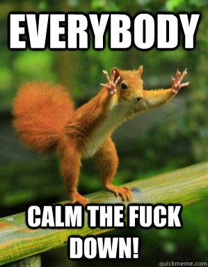EVERYBODY  CALM THE **** DOWN! - EVERYBODY  CALM THE **** DOWN!  Panic Squirrel