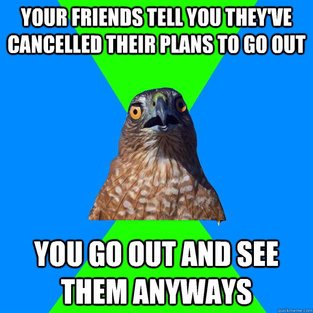 Your friends tell you they've cancelled their plans to go out You go out and see them anyways - Your friends tell you they've cancelled their plans to go out You go out and see them anyways  Hawkward