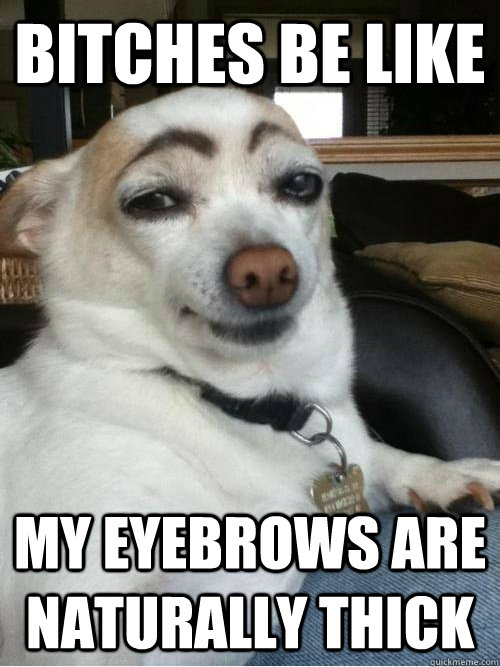 9fb678699c3b6dc58f07a31a04a7b06107cf980e72c0dac93d60c45dbdd7bd2e bitches be like my eyebrows are naturally thick eyebrows quickmeme