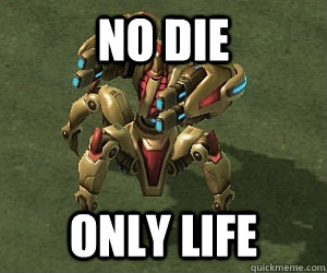 NO DIE ONLY LIFE