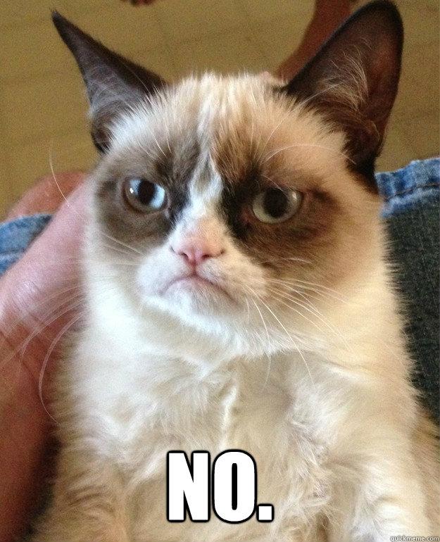 No.  -  No.   Grumpy Cat