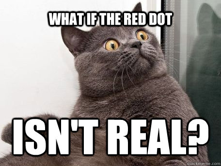 what if the red dot isn't real?  conspiracy cat