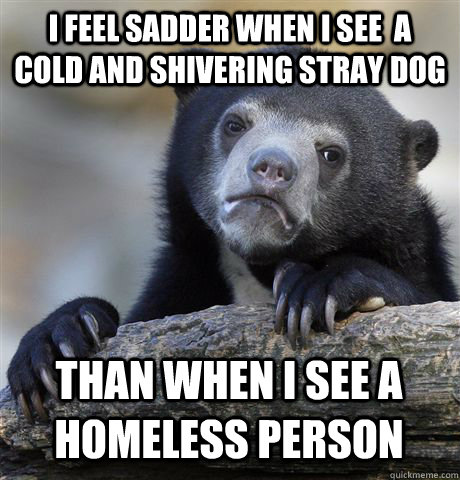 I FEEL SADDER WHEN I SEE  A COLD AND SHIVERING STRAY DOG THAN WHEN I SEE A HOMELESS PERSON - I FEEL SADDER WHEN I SEE  A COLD AND SHIVERING STRAY DOG THAN WHEN I SEE A HOMELESS PERSON  Confession Bear