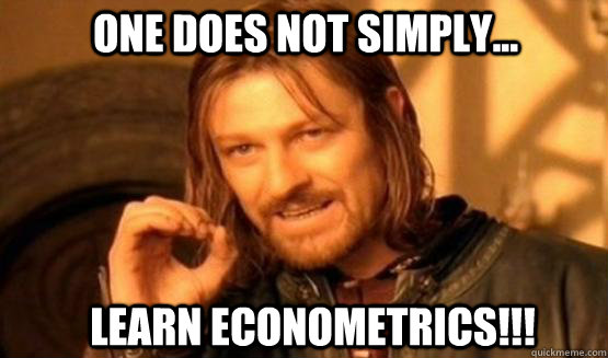 one does not simply... Learn Econometrics!!!  one does not simply finish a sean bean burger