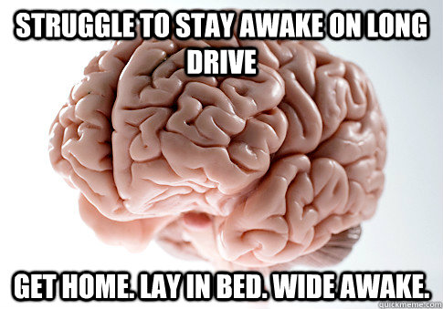 Struggle to stay awake on long drive Get home. Lay in bed. Wide awake. - Struggle to stay awake on long drive Get home. Lay in bed. Wide awake.  Scumbag Brain