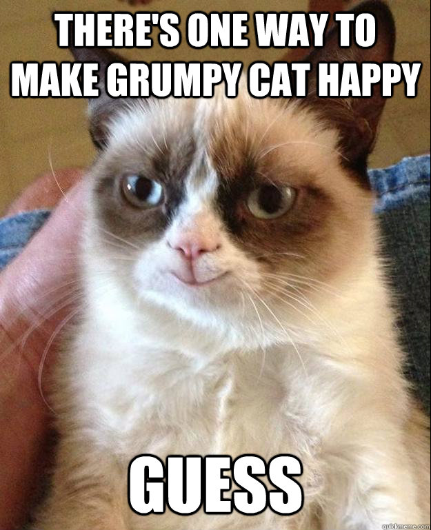 There's one way to make grumpy cat happy guess