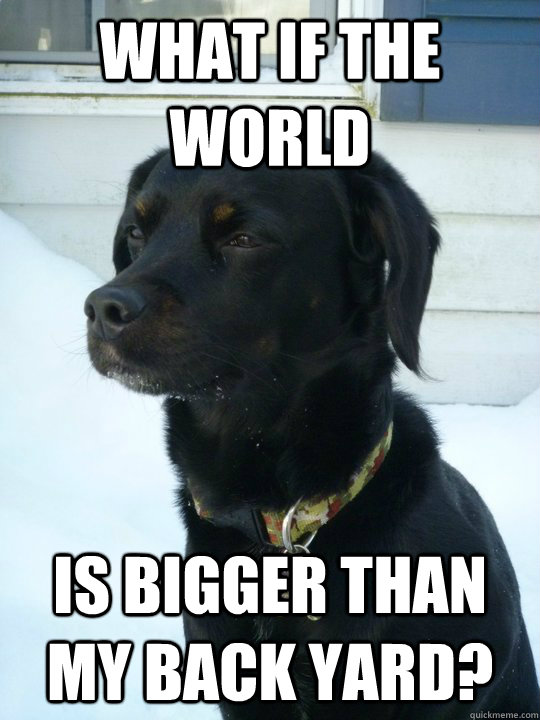 What if the world is bigger than my back yard?  Philosophical Puppy