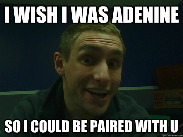 i wish i was adenine so i could be paired with u - i wish i was adenine so i could be paired with u  bad biology pun