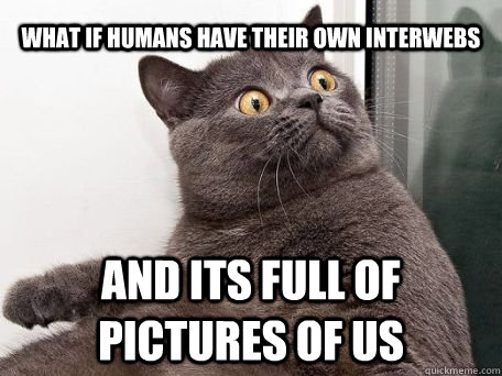 WHAT IF HUMANS have their own interwebs and its full of pictures of us