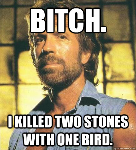 bitch. i killed two stones with one bird.