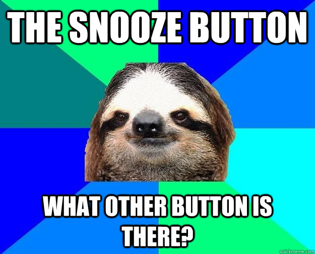 the snooze button what other button is there?