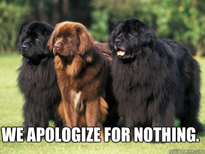 We apologize for nothing.
