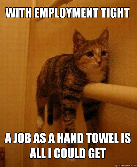 with employment tight a job as a hand towel is all i could get - with employment tight a job as a hand towel is all i could get  Monorail Cat