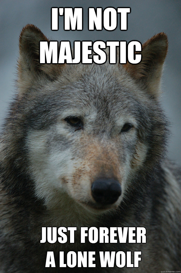 I'm not majestic Just forever                 A Lone Wolf  - I'm not majestic Just forever                 A Lone Wolf   Misc