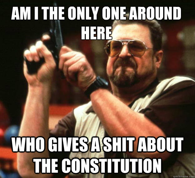 Am I the only one around here who gives a shit about the constitution - Am I the only one around here who gives a shit about the constitution  Walter