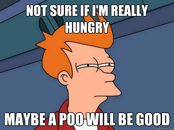 not sure if i'm really hungry MAYBE A POO WILL BE GOOD - not sure if i'm really hungry MAYBE A POO WILL BE GOOD  Futurama Fry