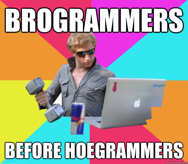 Brogrammers Before HoeGrammers  Brogrammer