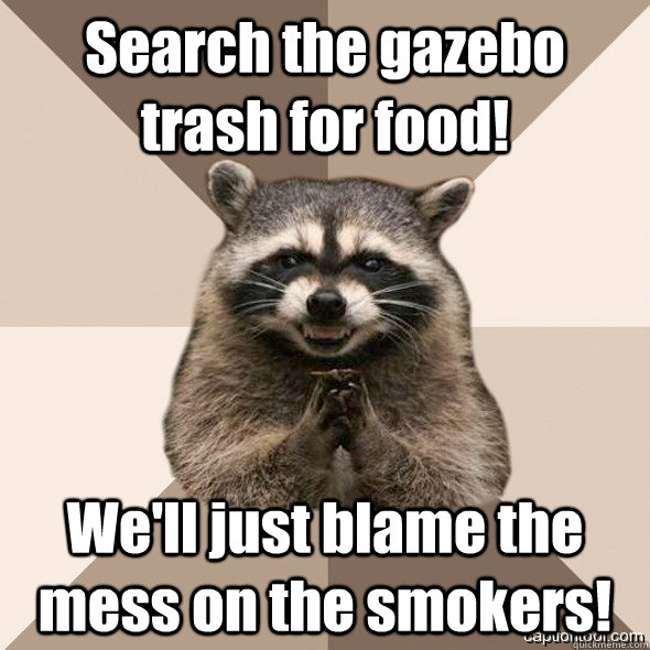 Search the gazebo trash for food! We'll just blame the mess on the smokers!