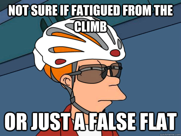 Not sure if fatigued from the climb or just a false flat