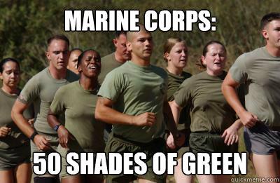 a0d69890046639e82b1aea824fdb91740f9652f113f16e1adbbd08865d6525d2 marine corps 50 shades of green usmc lol quickmeme,Marine Corps Meme