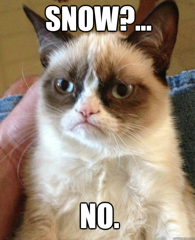 Snow ... No. - Grumpy Cat - quickmeme aacf9cd4c014